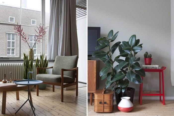plant-chair-web-900x600